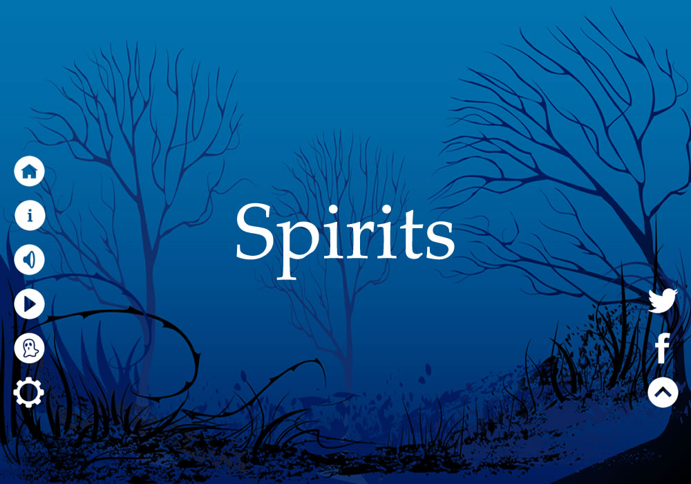 Image of Spirits